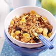 Granola with nuts and fruits — Stock Photo #18338151
