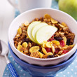 Granola with nuts and fruits — Stock Photo #18338163