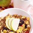 Granola with nuts and fruits — Stock Photo #18338287
