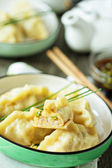 Chinese dumplings with ground chicken — Stock Photo