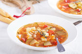 Soup with vegetables and beans — Stock Photo