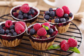 Berry muffin with oats — Stock Photo
