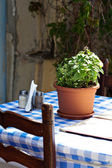 Old fashioned cafe terrace — Stock Photo