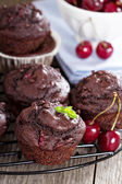 Chocolate muffins with cherry — Stock Photo