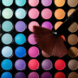 Makeup set. Professional multicolor eyeshadow palette — Stock Photo #13132555