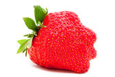 Strawberry on white background — Stock Photo