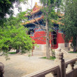 Forbidden City - Beijing, China — Stock Photo #13409665