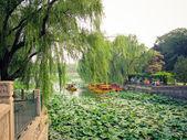 Scene of imperial park — Stock Photo