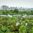 Park near Giant Wild Goose Pagoda Xian, China. — Stock Photo #13735760