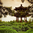 Park near Giant Wild Goose Pagoda Xian, China. — Stock Photo #13736017