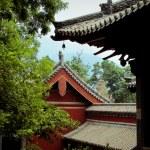 Shaolin Temple in China. — Stock Photo #18004419