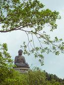 Statue of buddha in Po Lin Monastery — Stock Photo