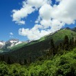 Caucasus Mountains. Region Dombay — Stock Photo