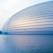 China National Grand Theater - Stock Photo