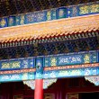 Details of Forbidden City — Stock Photo #26606313