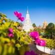 Royal Palace in Phnom Penh — Stock Photo #41487443
