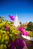 Royal Palace in Phnom Penh — Foto de Stock