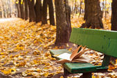 Old book on the bench in autumn park — Stock Photo