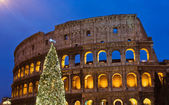 Christmas tree at Coliseum in the night — Stock Photo