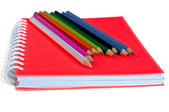 Turuncu defter ve renkli kalemler — Stok fotoğraf