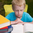 Royalty-Free Stock Photo: 6-year old boy reading book