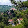 Small village in Troodos mountains — Stock Photo #12871436