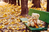 Teddy bear on the bench in autumn park — Stock Photo