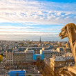 Gargoyle on Notre Dame de Paris — Stock Photo