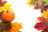 Fall border with pumpkin and autumn leaves — Stock Photo