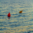 Red and yellow buoys during sunset — Stock Photo