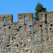 Wall of famous medieval city, Carcassonne, France — Stock Photo #12853584