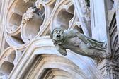 Gargouille de la basilique saint-saint-nazaire-et-saint-celse, carcassonne — Photo