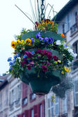 Street decoration, Bayonne, France — Foto Stock