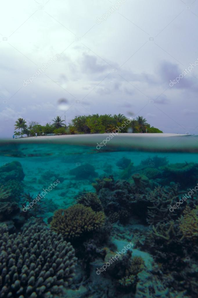 Tropical Island And Coral Reef Maldives Stock Photo