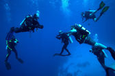 Group of divers on 5-min safety stop, Cuba — Stock Photo