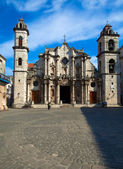 Cathedral of The Virgin Mary of the Immaculate Conception (1748- — Stock Photo