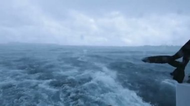 Tropical rainstorm with wind and waves in ocean, Maldives — Stock Video