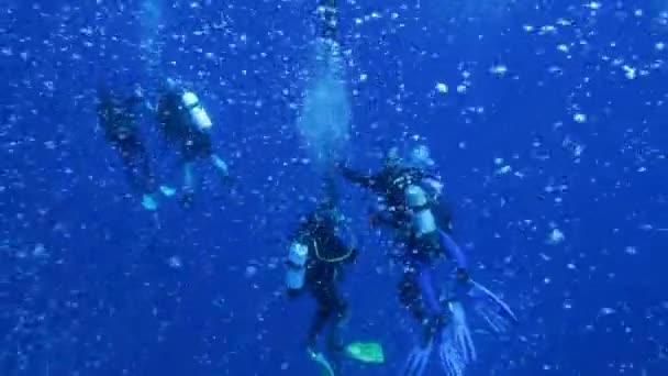 Plongeurs sur 5 min arrêt après la plongée de zénobie, avec des centaines bulles — Vidéo