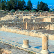 Ancient mosaics in the archaeological site, Paphos, Cyprus — Stock Photo #13298359