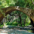 Tzelefos venetians Bridge in Trodos, Cyprus — Stock Photo #13298488