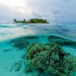Semi Underwater Scene of Island and Reef — Stock Photo