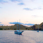 Yachts Anchored near Shores of Komodo — Stock Photo
