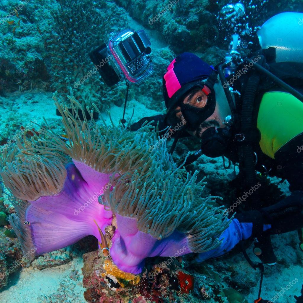 壁纸 海底 海底世界 海洋馆 水族馆 1024_1024