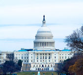 Capitol Building at Day, Washington DC — Stock Photo