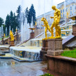 Grand Cascade Fountains At Peterhof Palace — Stok fotoğraf