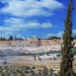 Panorama - Dome of the Rock and Jerusalem Wall - Stock Photo