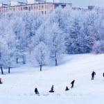 Snowy Winter Landscape — Stock Photo #35622409