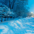 Night Winter City Scene — Stock Photo #35622495