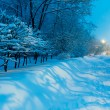Stock Photo: Night Winter City Scene