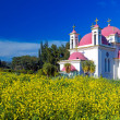 Orthodox Church and Mustard Field near Galilee Sea — Stock Photo